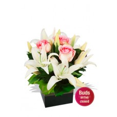 Small Boxed Oriental ands Rose